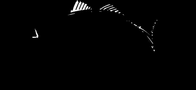 TWT Fishing Charters Logo